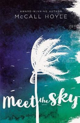 Meet the Sky by McCall Hoyle