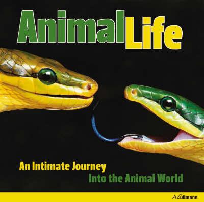 Animal Life image
