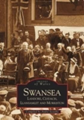 Swansea, Landore, Clydach & Llamslett by Andrew Scoville
