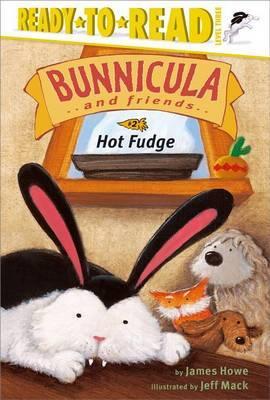 Hot Fudge by James Howe image