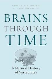 Brains Through Time by Georg F. Striedter
