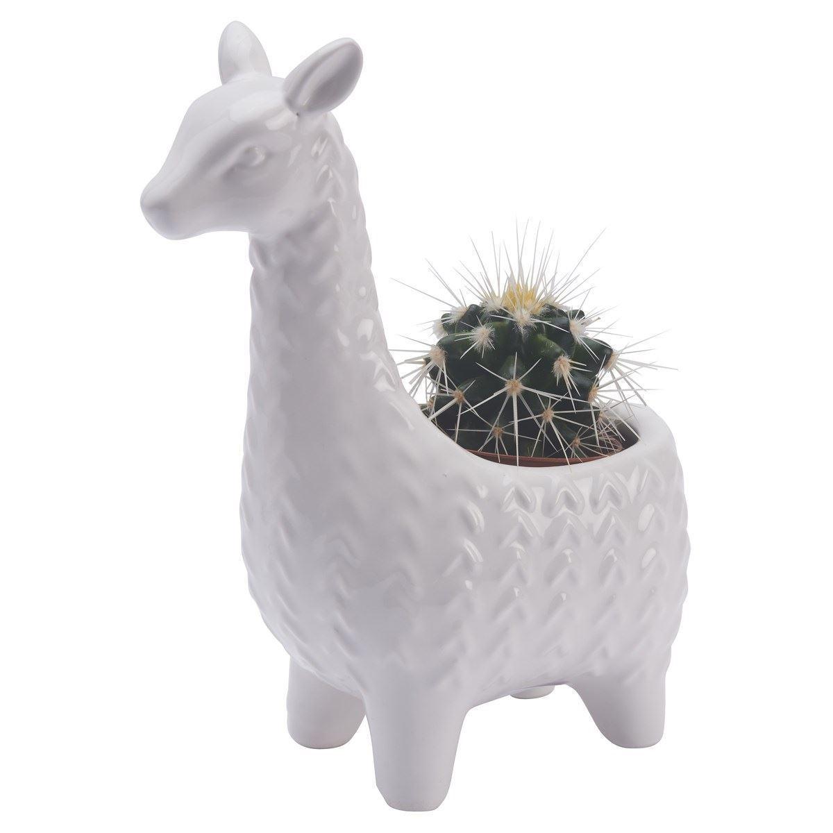 Llama Planter image