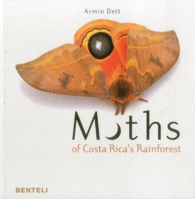 Moths of Costa Rica's Rainforest by Armin Dett image