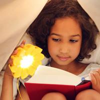 Little Sun: Solar Lamp image
