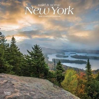 New York Wild & Scenic 2019 Square by Inc Browntrout Publishers