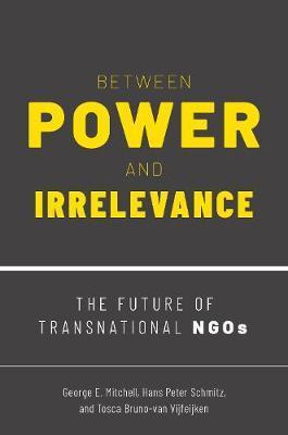 Between Power and Irrelevance by Hans Peter Schmitz