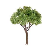 "JTT Scenic Green Jacaranda Trees 2.5"" (3pk) - H0 Scale"
