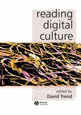 Reading Digital Culture image