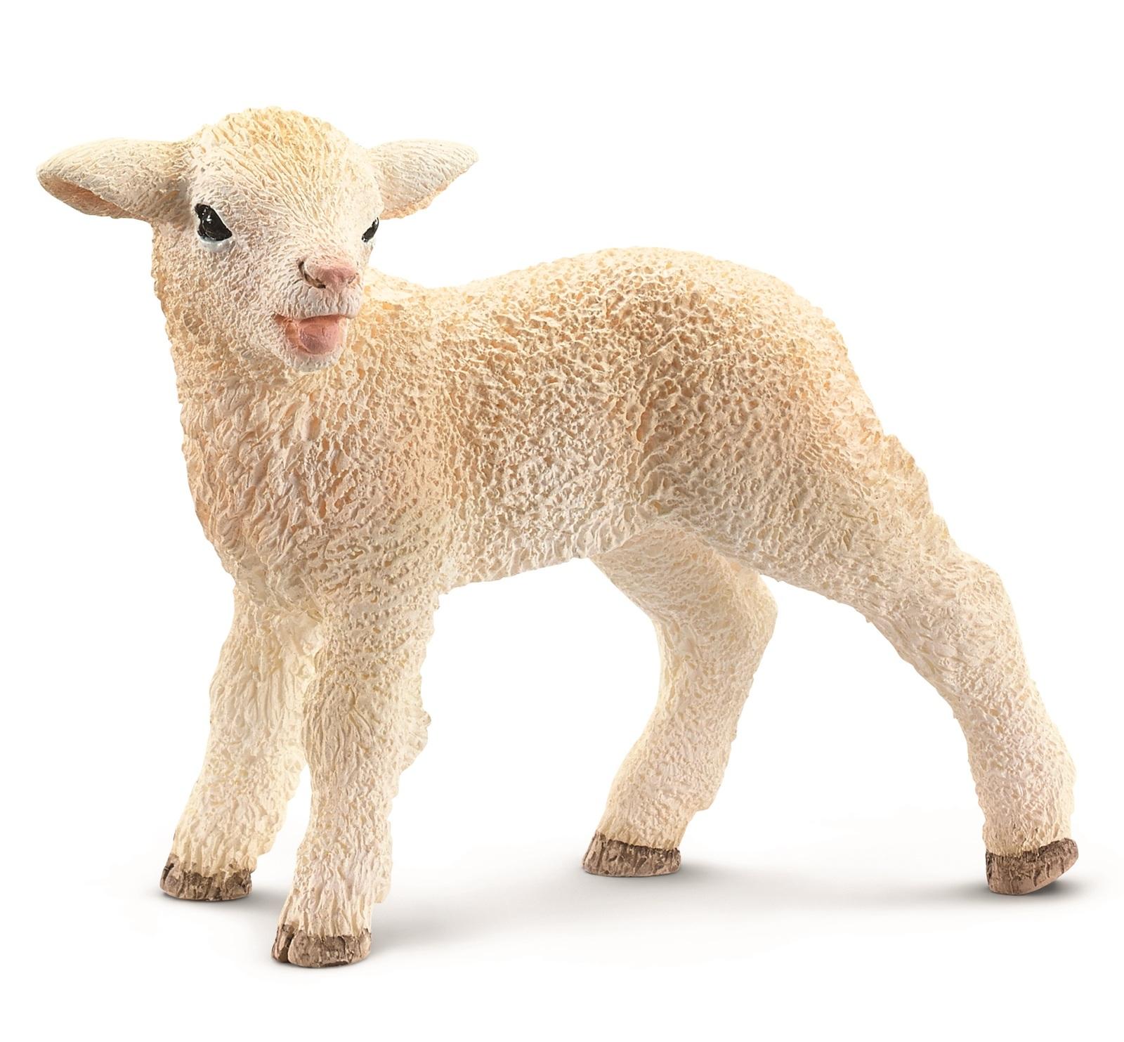 Schleich: Lamb (13744) image