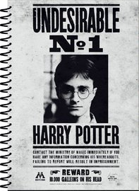 Harry Potter: A5 Notebook - Undesirable No 1