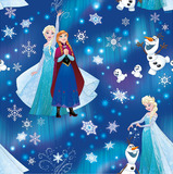 Frozen School Book Covering (1M)