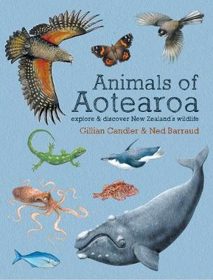 Animals of Aotearoa: Explore & discover New Zealand's wildlife by Gillian Candler