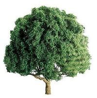 JTT: H0/N Scale Oak Trees - 2 Pack
