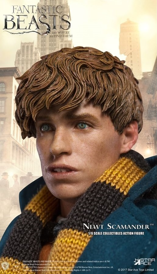 Fantastic Beasts: Newt Scamander - 1/6 Scale Figure image
