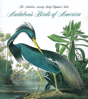 Audubon's Birds of America - Tiny Folio by Roger Tory Peterson image