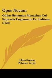 Opus Novum: Gildas Britannus Monachus Cui Sapientis Cognometu Est Inditum (1525) by Polydore Vergil