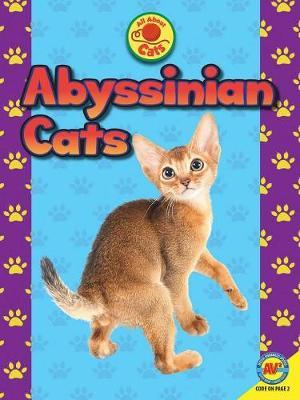 Abyssinian Cats by Tammy Gagne image