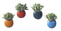 Decorative Wall Pots - Set of 4