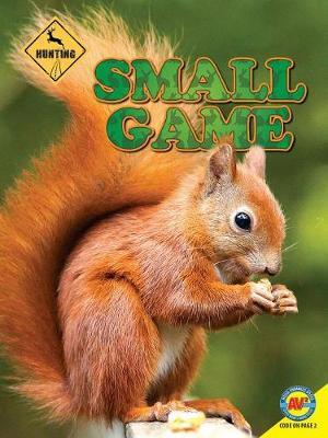Small Game by Janet Gurtler