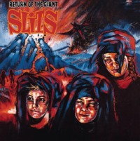 Return Of The Giant Slits by The Slits