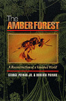 The Amber Forest: A Reconstruction of a Vanished World by George O Poinar, JR.