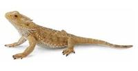 CollectA - Bearded Dragon Lizard