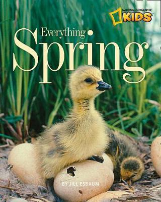 Everything Spring by Jill Esbaum