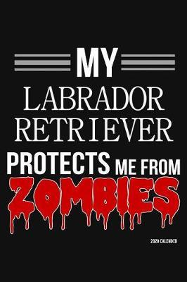 My Labrador Retriever Protects Me From Zombies 2020 Calender by Harriets Dogs