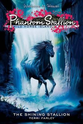 Phantom Stallion: Wild Horse Island #2: The Shining Stallion by Terri Farley