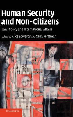 Human Security and Non-Citizens image