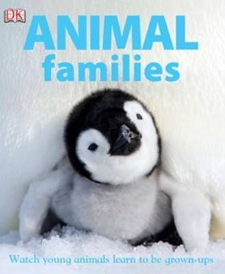 Animal Families: Watch Young Animals Learn to be Grown-Ups