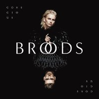 Conscious by Broods image