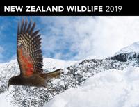 New Zealand Wildlife 2019 Horizontal Wall Calendar