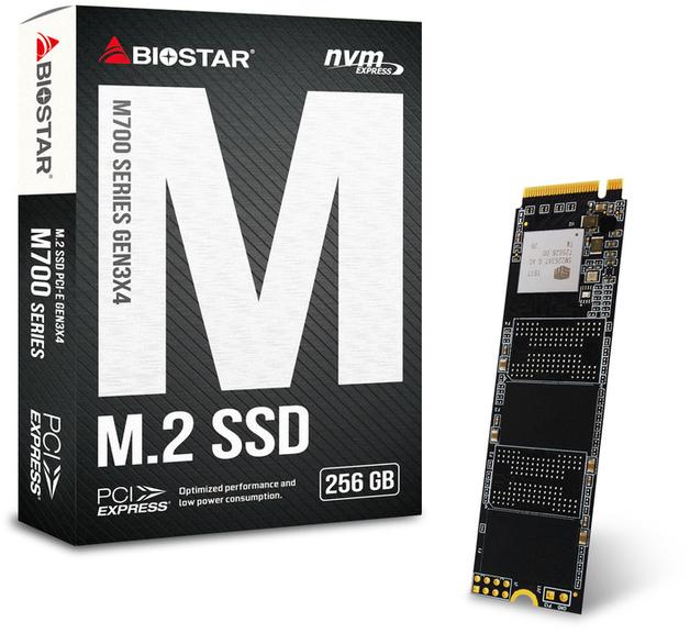 256GB BIOSTAR M700 M.2 SSD