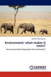 Environment by Raphael Mweninguwe
