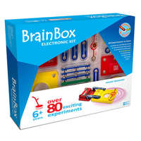 Brain Box: Metal Detector
