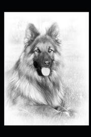 2019 Planner Calendar for German Shepherd Dog Lovers by Amber Richards