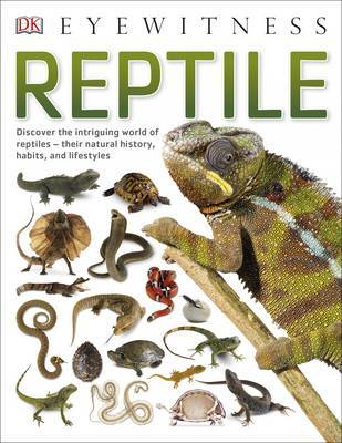 Reptile by DK image