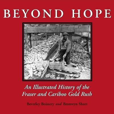 Beyond Hope by Beverley Boissery image