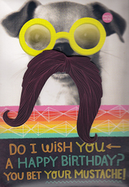 Hallmark: Interactive Birthday Card - Male Pugstache