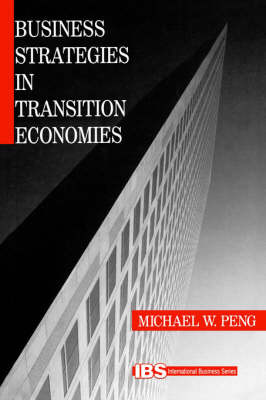 Business Strategies in Transition Economies by Michael W. Peng image