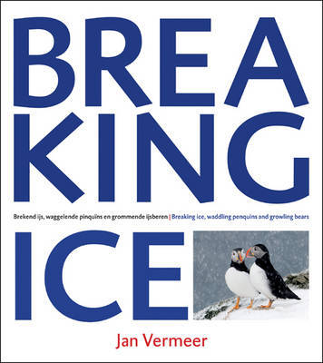 Breaking Ice by Jan Vermeer
