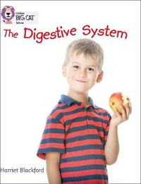 The Digestive System image