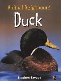 British Animals: Duck by Stephen Savage image