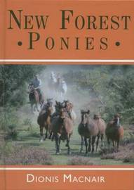 New Forest Ponies by Dionis Macnair image