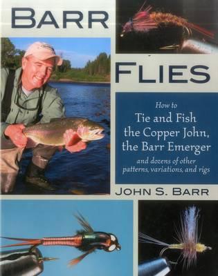 Barr Flies by John S. Barr image