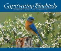 Captivating Bluebirds by Stan Tekiela image