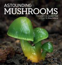 Astounding Mushrooms by Alain Bellocq