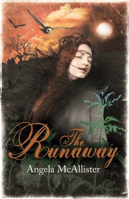 The Runaway by Angela McAllister image