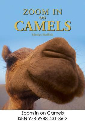 Zoom in on Camels by Marilyn Sheffield